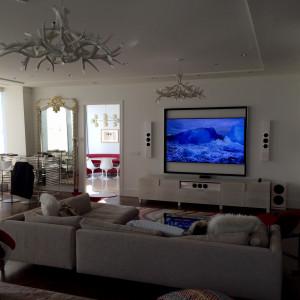Condo Living Room with Sonos #2