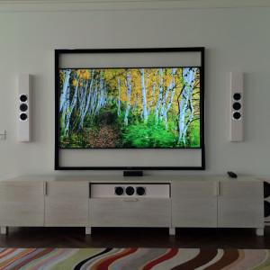 Condo Living Room with Sonos