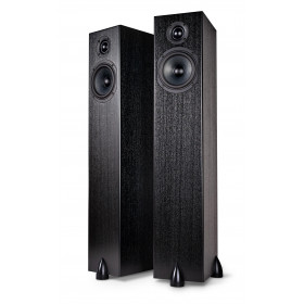 Totem Sky Tower Speakers